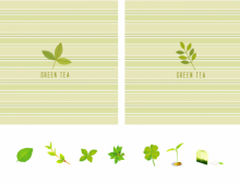 Green Tea Template & Icons