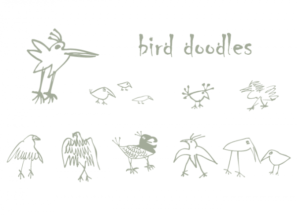 Vector Bird Doodles