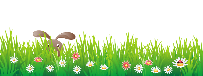 Bunny in grass banner