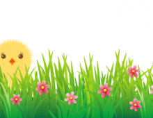 Chicken in grass banner