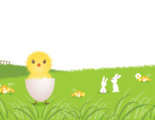 New born chicken banner
