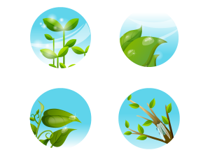 Vector Stylish Green Leaves