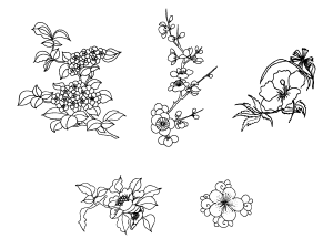 Vector Outline Blossom Flowers