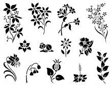 Spring Flowers in black & white