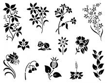 Spring Flowers in black & white